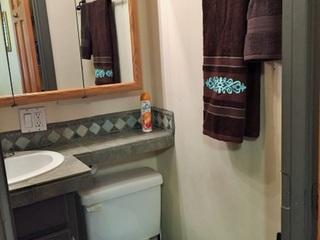 Bathroom 1, shower