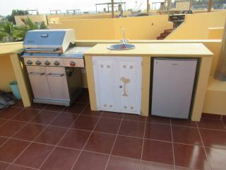 Rooftop BBQ Kitchen