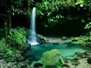 The Emerald Pool #5 w/o A/C